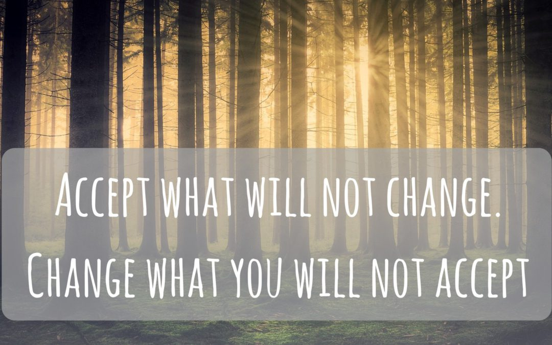 Accept What Will Not Change, Change What You Will Not Accept